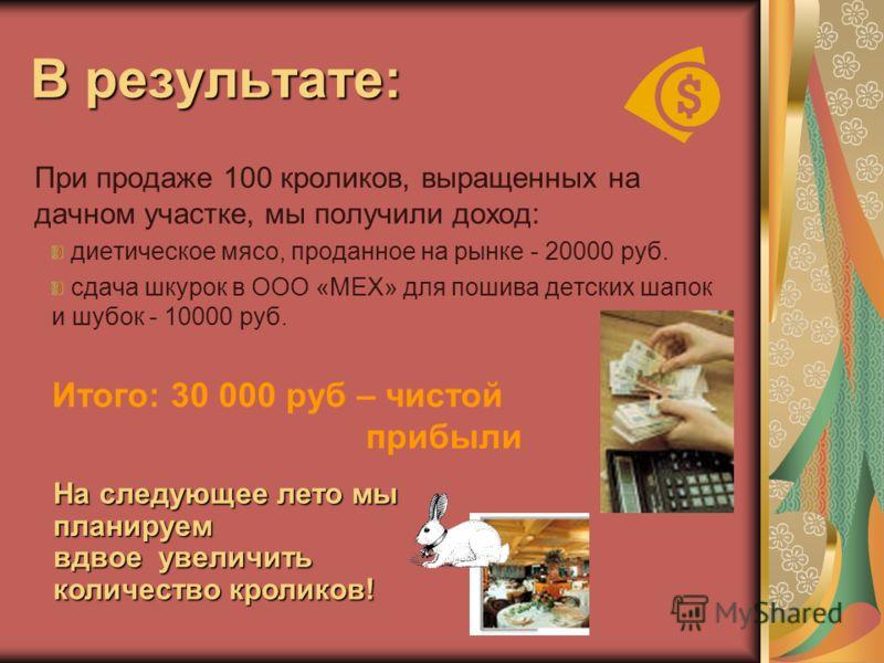 В результате: При продаже 100 кроликов, выращенных на дачном участке, мы получили доход: диетическое мясо, проданное на рынке - 20000 руб. сдача шкурок в ООО «МЕХ» для пошива детских шапок и шубок - 10000 руб. Итого: 30 000 руб – чистой прибыли На сл