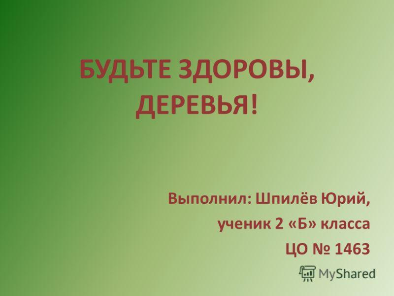 БУДЬТЕ ЗДОРОВЫ, ДЕРЕВЬЯ! Выполнил: Шпилёв Юрий, ученик 2 «Б» класса ЦО 1463
