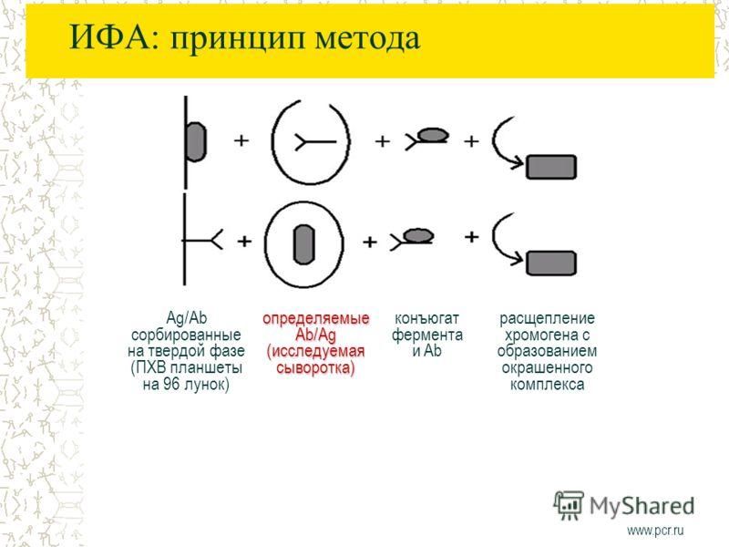 ИФА: принцип метода Ag/Ab сорбированные на твердой фазе (ПХВ планшеты на 96 лунок) определяемые Ab/Ag (исследуемая сыворотка) конъюгат фермента и Ab расщепление хромогена с образованием окрашенного комплекса www.pcr.ru