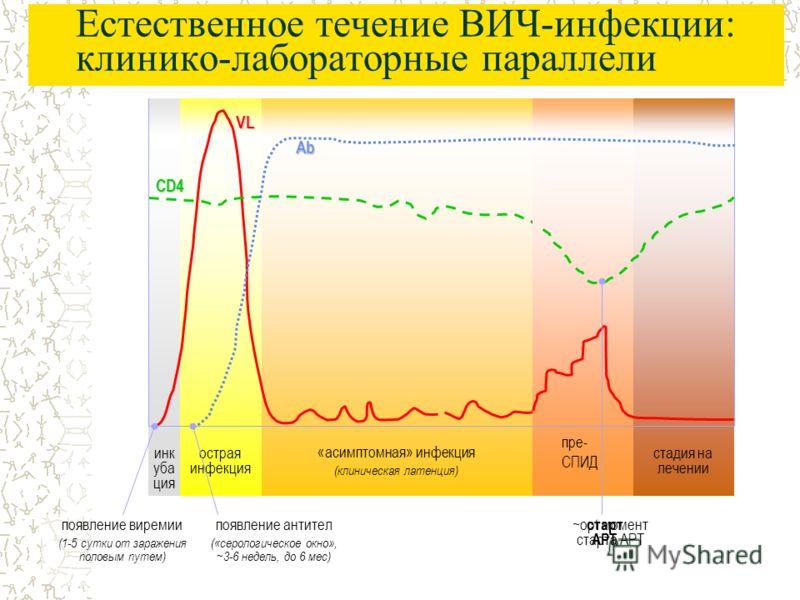 Естественное течение ВИЧ-инфекции: клинико-лабораторные параллели пре-СПИД (первые признаки ИД) «асимптомная» инфекция (клиническая латенция) СПИДострая инфекция инк уба ция CD4 VL Ab появление виремии (1-5 сутки от заражения половым путем) появление