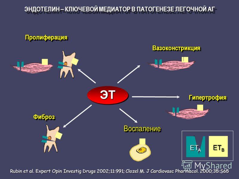 ЭНДОТЕЛИН – КЛЮЧЕВОЙ МЕДИАТОР В ПАТОГЕНЕЗЕ ЛЕГОЧНОЙ АГ Rubin et al. Expert Opin Investig Drugs 2002;11:991; Clozel M. J Cardiovasc Pharmacol. 2000;35:S65 ПролиферацияПролиферация ВоспалениеВоспаление ГипертрофияГипертрофия ВазоконстрикцияВазоконстрик