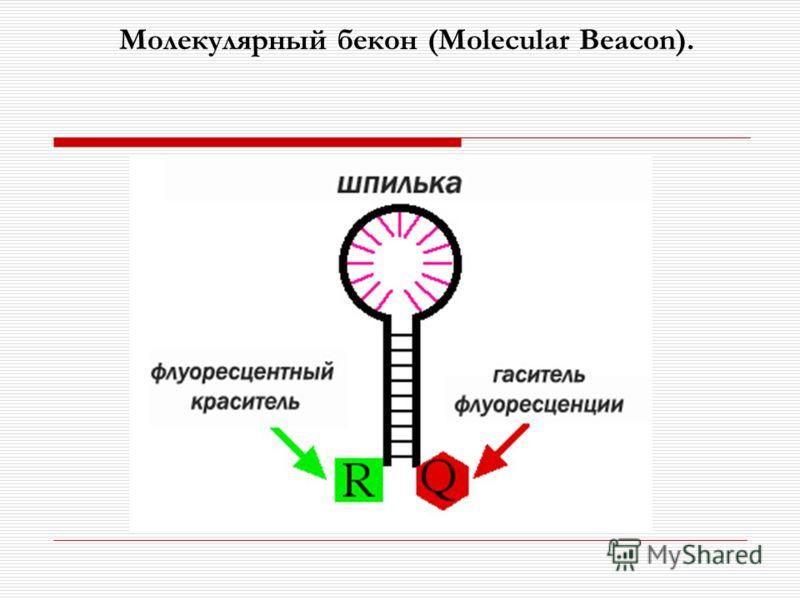 Молекулярный бекон (Molecular Beacon).