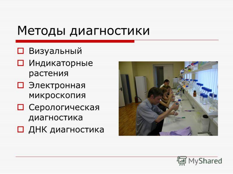 Методы диагностики Визуальный Индикаторные растения Электронная микроскопия Серологическая диагностика ДНК диагностика