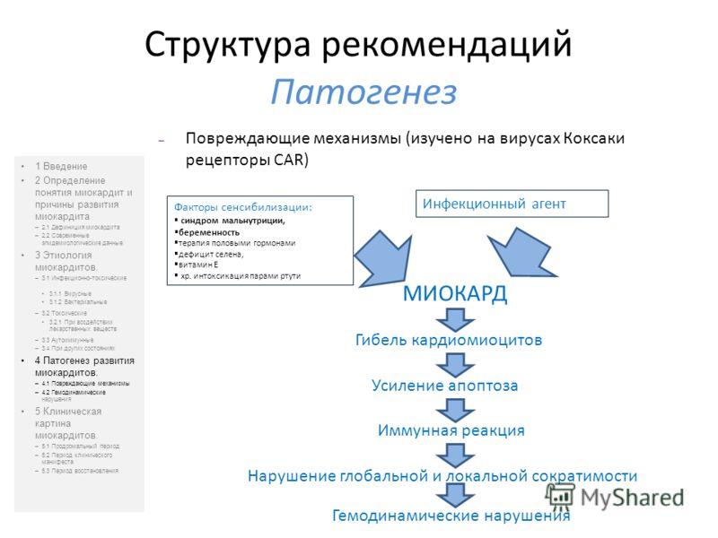 Структура рекомендаций Патогенез 1 Введение 2 Определение понятия миокардит и причины развития миокардита –2.1 Дефиниция миокардита –2.2 Современные эпидемиологические данные. 3 Этиология миокардитов. –3.1 Инфекционно-токсические 3.1.1 Вирусные 3.1.2