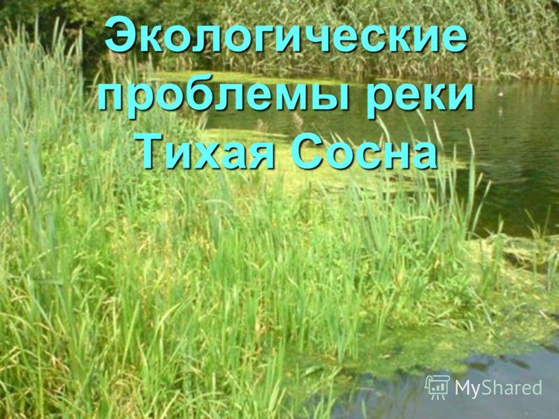 Экологические проблемы реки Тихая Сосна