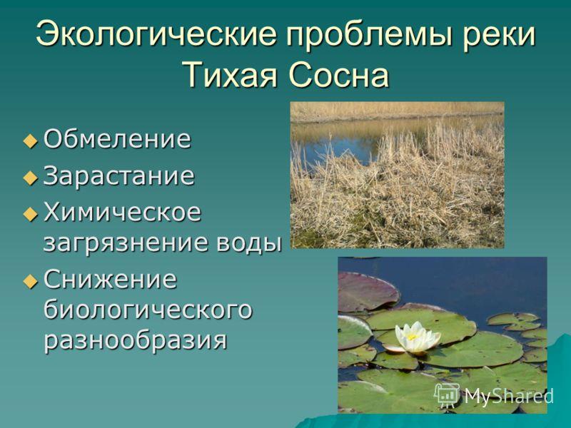 Обмеление Обмеление Зарастание Зарастание Химическое загрязнение воды Химическое загрязнение воды Снижение биологического разнообразия Снижение биологического разнообразия