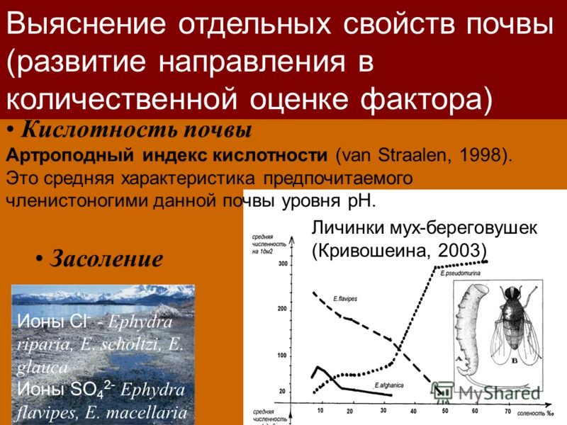 Кислотность почвы Артроподный индекс кислотности (van Straalen, 1998). Это средняя характеристика предпочитаемого членистоногими данной почвы уровня рН. Выяснение отдельных свойств почвы (развитие направления в количественной оценке фактора) Личинки