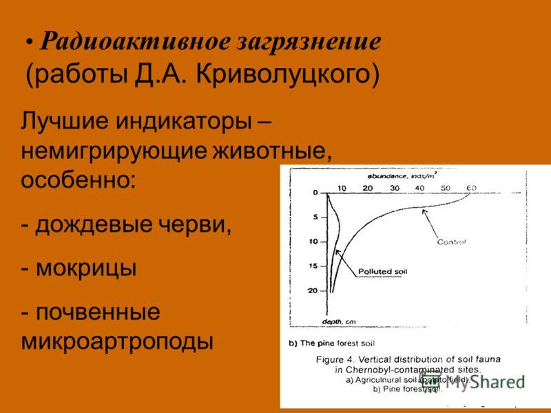 Лучшие индикаторы – немигрирующие животные, особенно: - дождевые черви, - мокрицы - почвенные микроартроподы Радиоактивное загрязнение (работы Д.А. Криволуцкого)