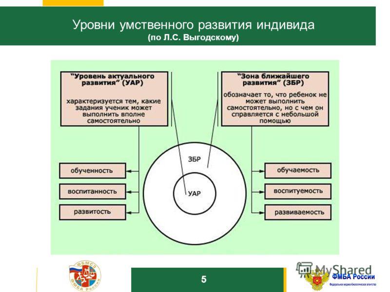 1010 Уровни умственного развития индивида (по Л.С. Выгодскому) 5