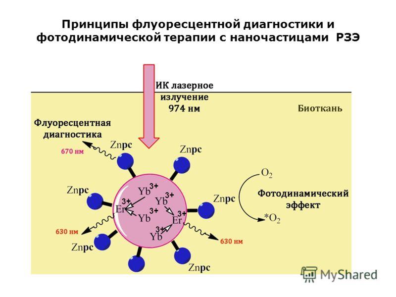 Принципы флуоресцентной диагностики и фотодинамической терапии с наночастицами РЗЭ 3+