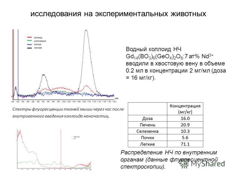 Водный коллоид НЧ Gd 14 (BO 3 ) 6 (GeO 4 ) 2 O 8 :7 ат% Nd 3+ вводили в хвостовую вену в объеме 0.2 мл в концентрации 2 мг/мл (доза = 16 мг/кг). Спектры флуоресценции тканей мыши через час после внутривенного введения коллоида наночастиц. Распределен