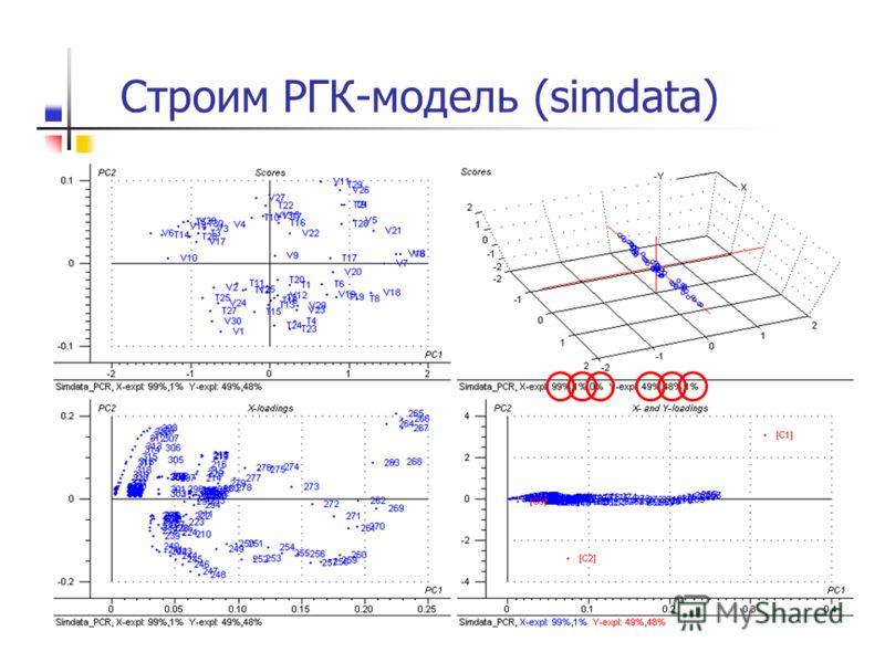 Строим РГК-модель (simdata)