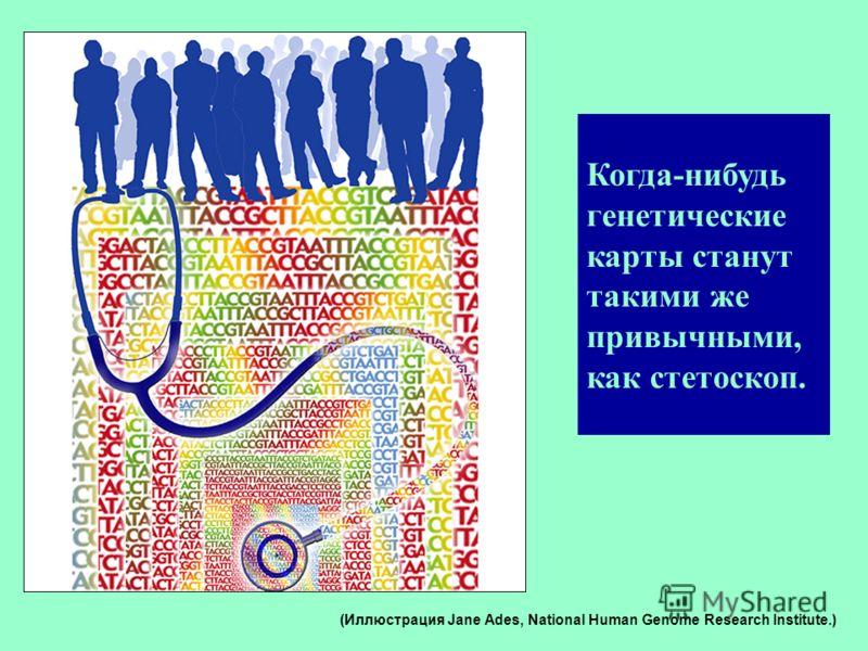 Когда-нибудь генетические карты станут такими же привычными, как стетоскоп. (Иллюстрация Jane Ades, National Human Genome Research Institute.)