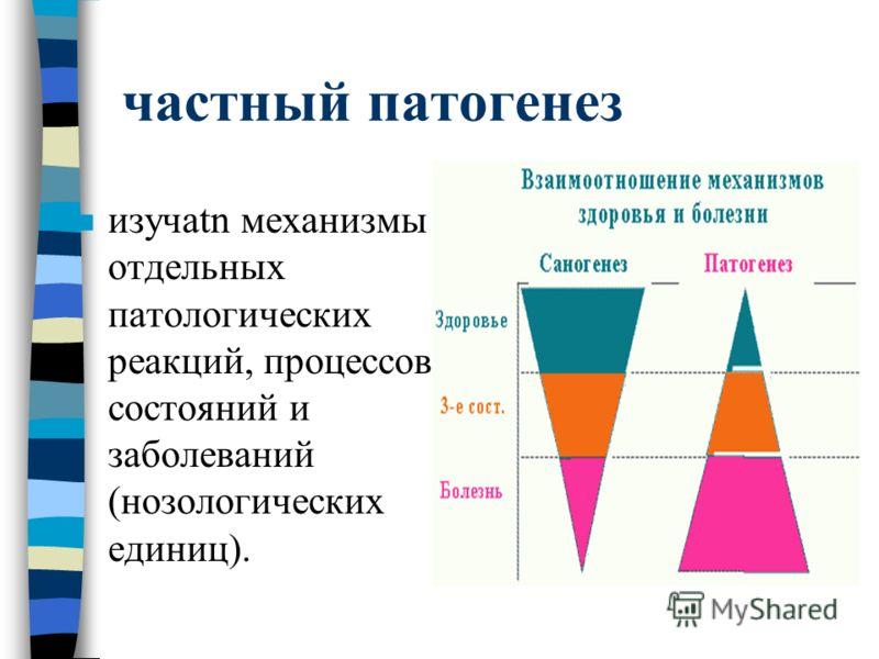 частный патогенез n изучаtn механизмы отдельных патологических реакций, процессов, состояний и заболеваний (нозологических единиц).