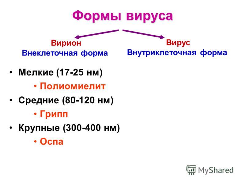 Формы вируса Вирион Внеклеточная форма Вирус Внутриклеточная форма Мелкие (17-25 нм) Полиомиелит Средние (80-120 нм) Грипп Крупные (300-400 нм) Оспа