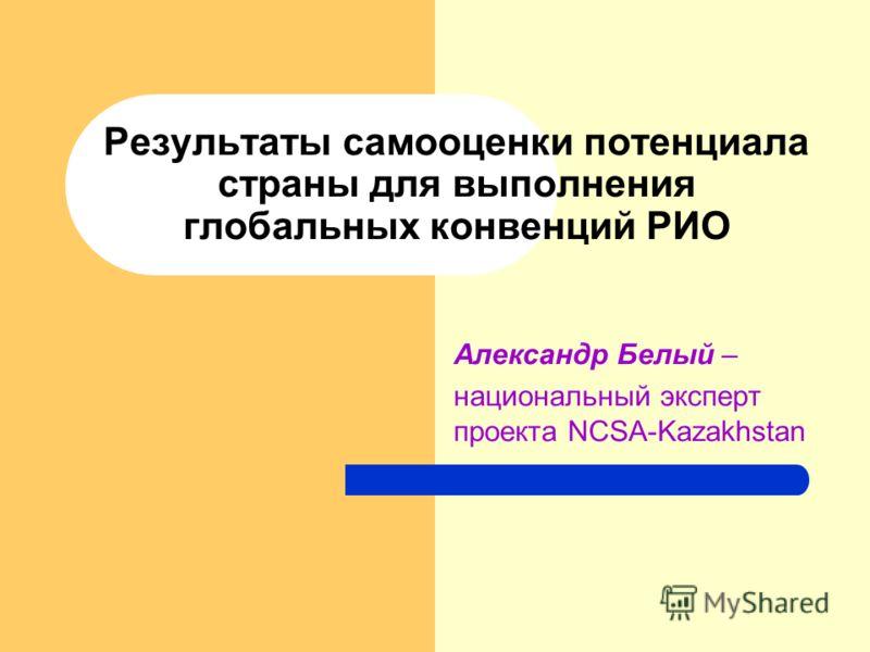 Результаты самооценки потенциала страны для выполнения глобальных конвенций РИО Александр Белый – национальный эксперт проекта NCSA-Kazakhstan