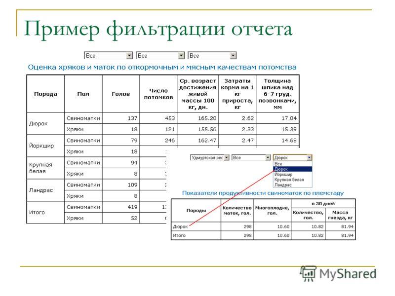 Пример фильтрации отчета