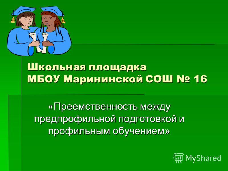 Школьная площадка МБОУ Марининской СОШ 16 «Преемственность между предпрофильной подготовкой и профильным обучением»