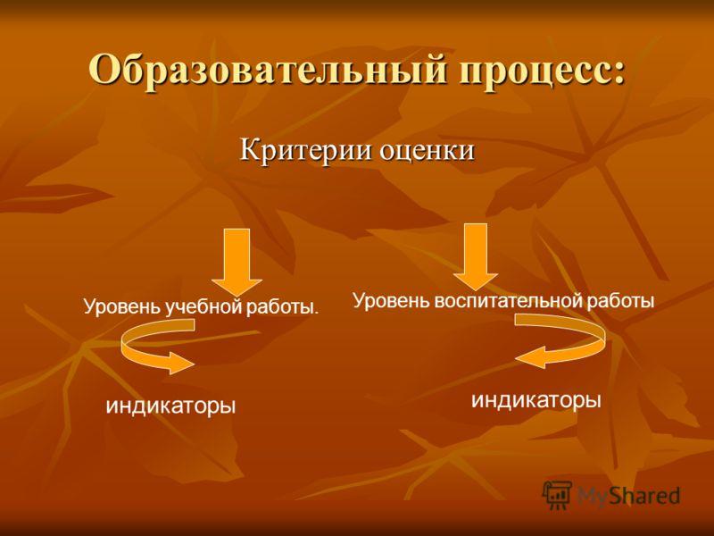 Образовательный процесс: Критерии оценки Уровень учебной работы. Уровень воспитательной работы индикаторы