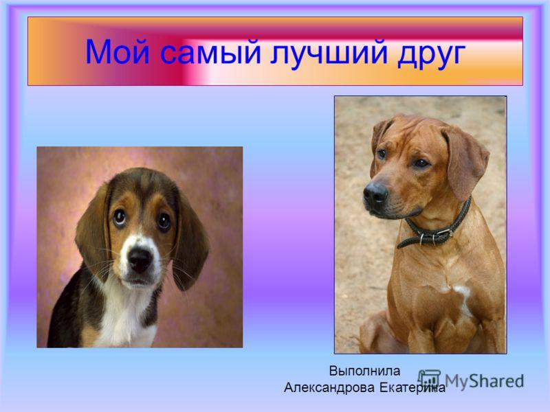 Мой самый лучший друг Выполнила Александрова Екатерина