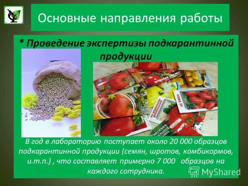 Основные направления работы * Проведение экспертизы подкарантинной продукции В год в лабораторию поступает около 20 000 образцов подкарантинной продукции (семян, шротов, комбикормов, и.т.п.), что составляет примерно 7 000 образцов на каждого сотрудни