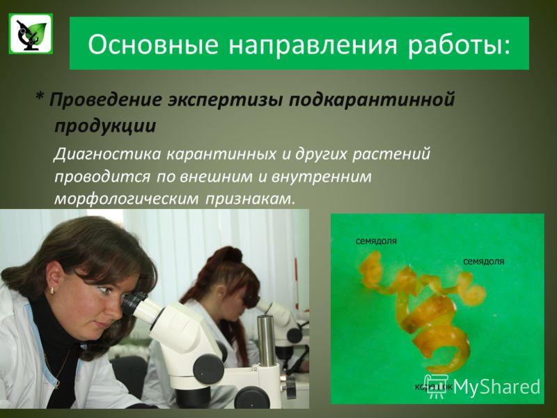 Основные направления работы: * Проведение экспертизы подкарантинной продукции Диагностика карантинных и других растений проводится по внешним и внутренним морфологическим признакам.