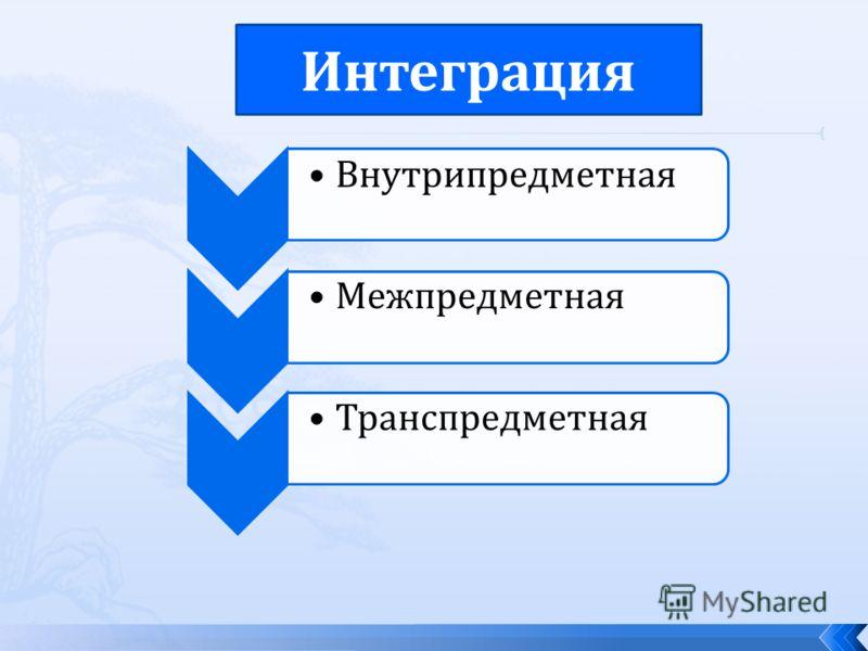 Внутрипредметная МежпредметнаяТранспредметная