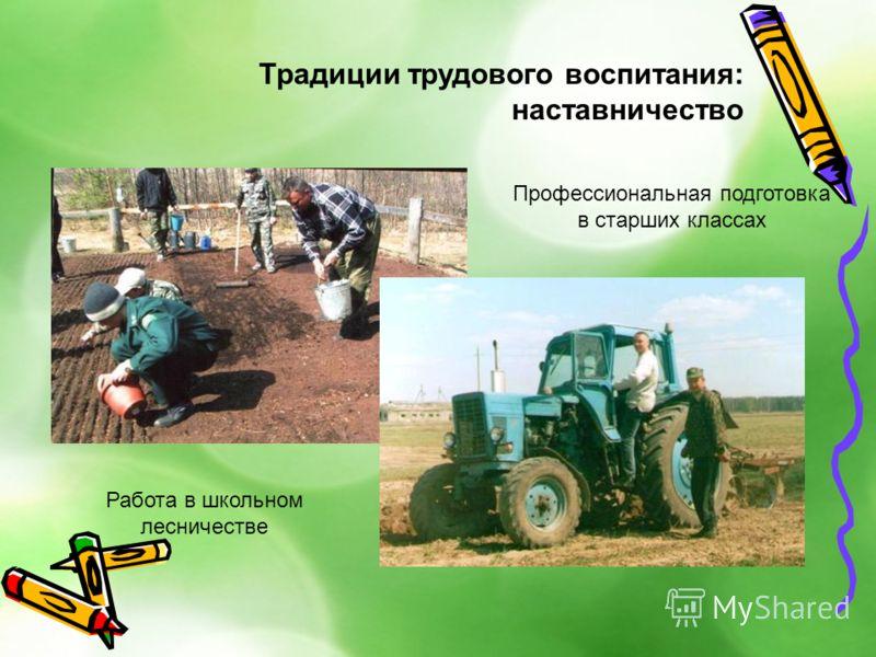 Традиции трудового воспитания: наставничество Профессиональная подготовка в старших классах Работа в школьном лесничестве