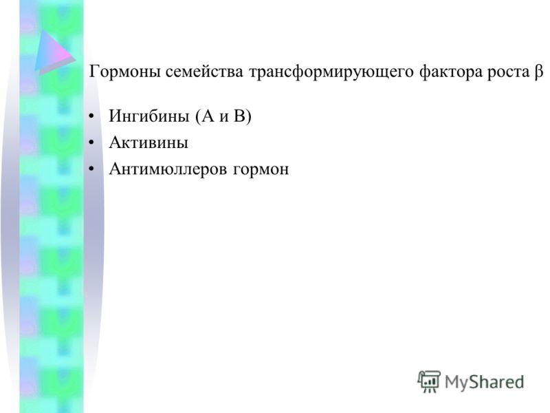 Гормоны семейства трансформирующего фактора роста β Ингибины (А и В) Активины Антимюллеров гормон