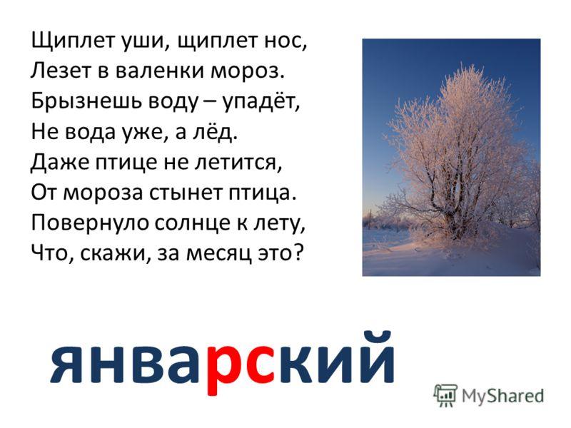 январский Щиплет уши, щиплет нос, Лезет в валенки мороз. Брызнешь воду – упадёт, Не вода уже, а лёд. Даже птице не летится, От мороза стынет птица. Повернуло солнце к лету, Что, скажи, за месяц это?