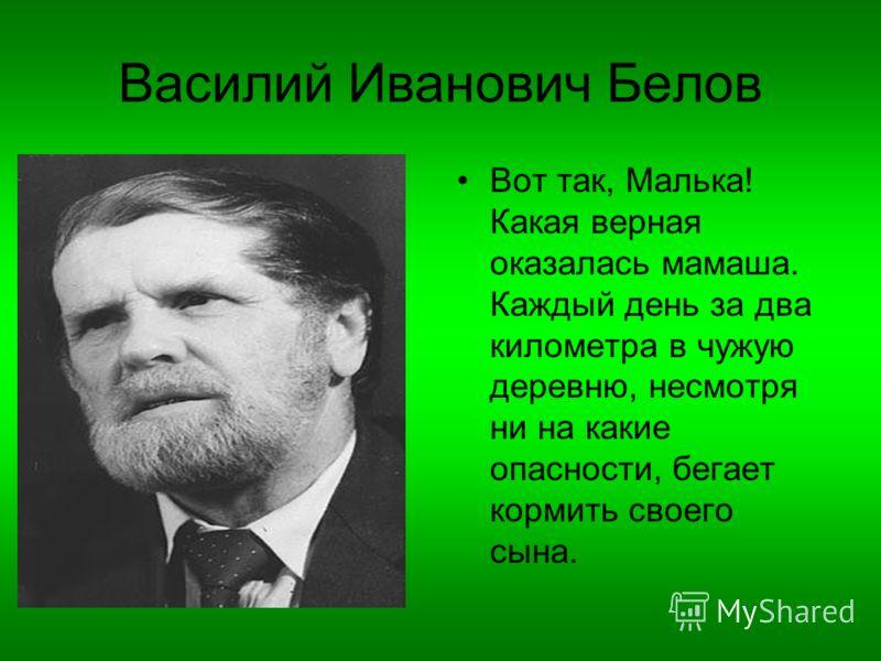 Василий Иванович Белов Вот так, Малька! Какая верная оказалась мамаша. Каждый день за два километра в чужую деревню, несмотря ни на какие опасности, бегает кормить своего сына.