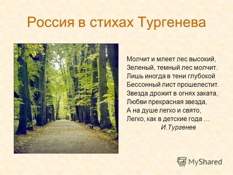Россия в стихах Тургенева Молчит и млеет лес высокий, Зеленый, темный лес молчит. Лишь иногда в тени глубокой Бессонный лист прошелестит. Звезда дрожит в огнях заката, Любви прекрасная звезда, А на душе легко и свято, Легко, как в детские года … И.Ту