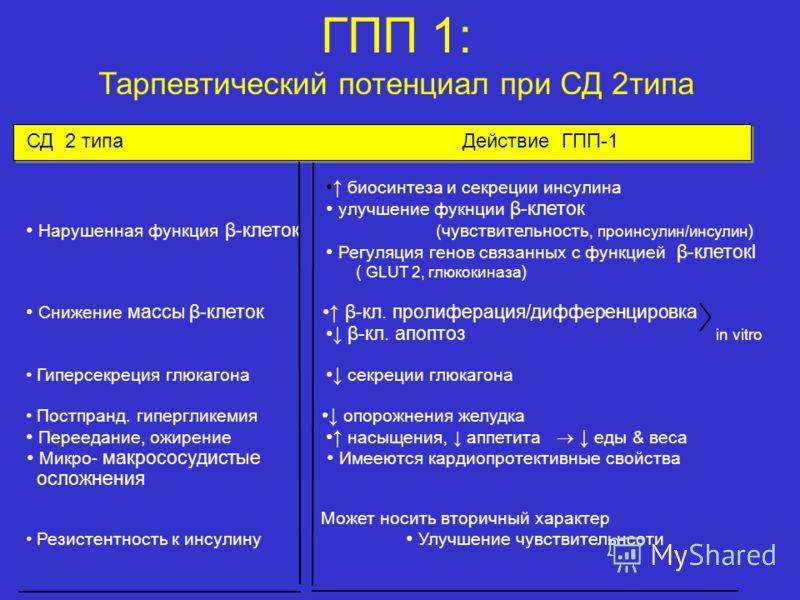 СД 2 типа Действие ГПП-1 биосинтеза и секреции инсулина улучшение фукнции β-клеток Нарушенная функция β-клеток (чувствительность, проинсулин/инсулин ) Регуляция генов связанных с функцией β-клетокl ( GLUT 2, глюкокиназа ) Снижение массы β-клеток β-кл