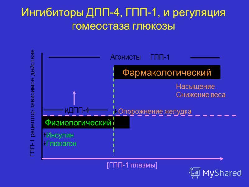 Ингибиторы ДПП-4, ГПП-1, и регуляция гомеостаза глюкозы Инсулин Глюкагон [ГПП-1 плазмы] Физиологический ГПП-1 рецептор зависимое действие иДПП-4 Опорожнение желудка Насыщение Снижение веса Фармакологический Агонисты ГПП-1