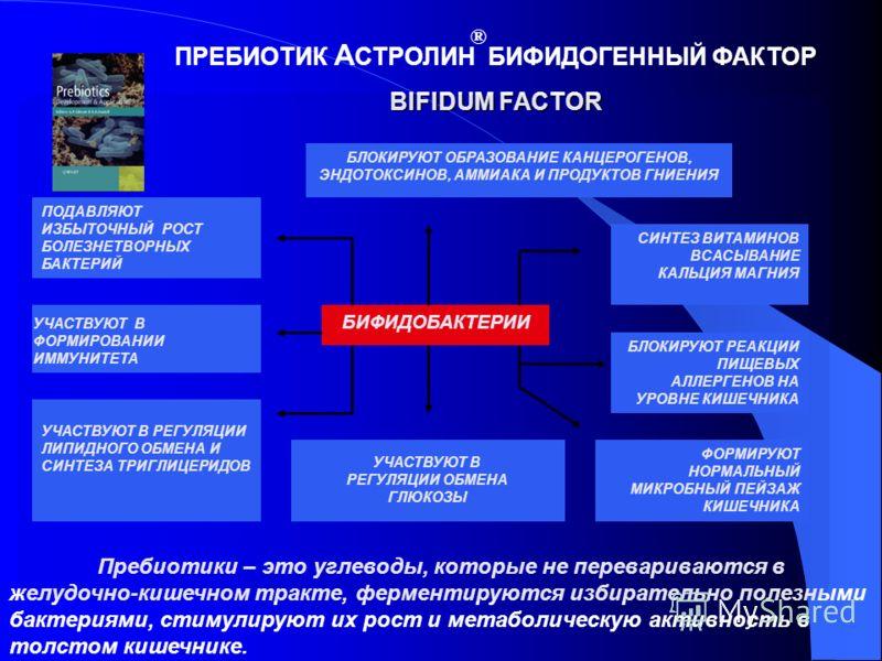 БИФИДОБАКТЕРИИ БЛОКИРУЮТ ОБРАЗОВАНИЕ КАНЦЕРОГЕНОВ, ЭНДОТОКСИНОВ, АММИАКА И ПРОДУКТОВ ГНИЕНИЯ СИНТЕЗ ВИТАМИНОВ ВСАСЫВАНИЕ КАЛЬЦИЯ МАГНИЯ БЛОКИРУЮТ РЕАКЦИИ ПИЩЕВЫХ АЛЛЕРГЕНОВ НА УРОВНЕ КИШЕЧНИКА ФОРМИРУЮТ НОРМАЛЬНЫЙ МИКРОБНЫЙ ПЕЙЗАЖ КИШЕЧНИКА УЧАСТВУЮТ