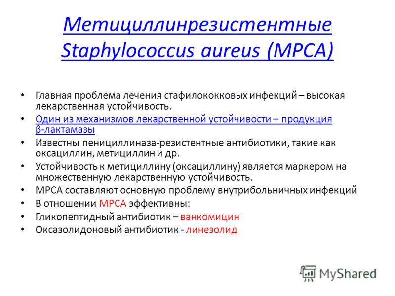 Пенициллиназа фото
