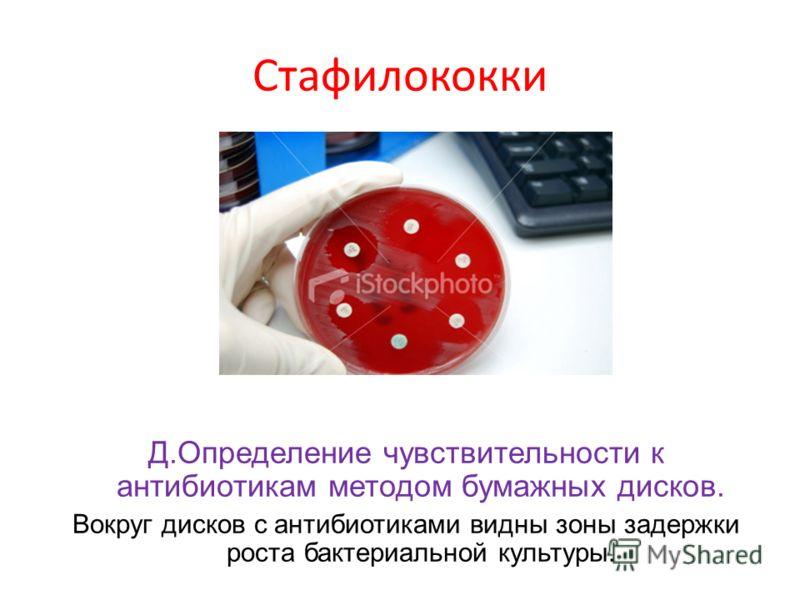 Стафилококки Д.Определение чувствительности к антибиотикам методом бумажных дисков. Вокруг дисков с антибиотиками видны зоны задержки роста бактериальной культуры.