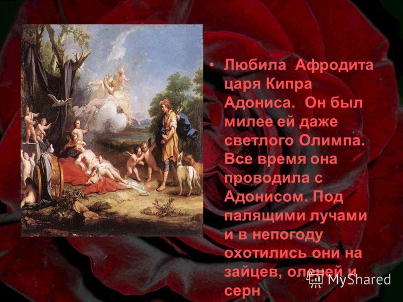 Любила Афродита царя Кипра Адониса. Он был милее ей даже светлого Олимпа. Все время она проводила с Адонисом. Под палящими лучами и в непогоду охотились они на зайцев, оленей и серн