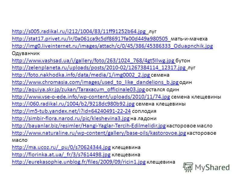 http://s005.radikal.ru/i212/1004/83/11ff91252b64.jpghttp://s005.radikal.ru/i212/1004/83/11ff91252b64.jpg луг http://stat17.privet.ru/lr/0a061ca9c5df86917fa00d449a980505http://stat17.privet.ru/lr/0a061ca9c5df86917fa00d449a980505 мать-и-мачеха http://i