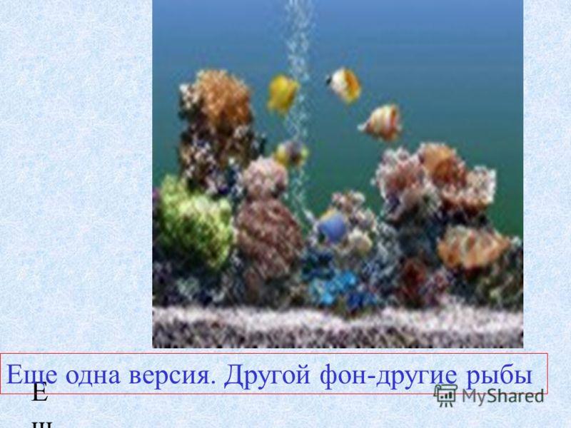 Это морское дно. Так можно изучать подводный мир.