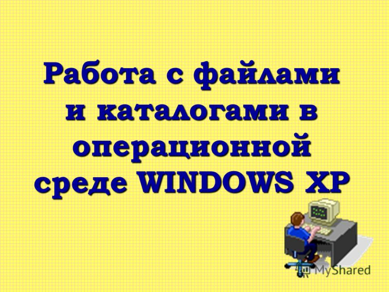 Работа с файлами и каталогами в операционной среде WINDOWS XP