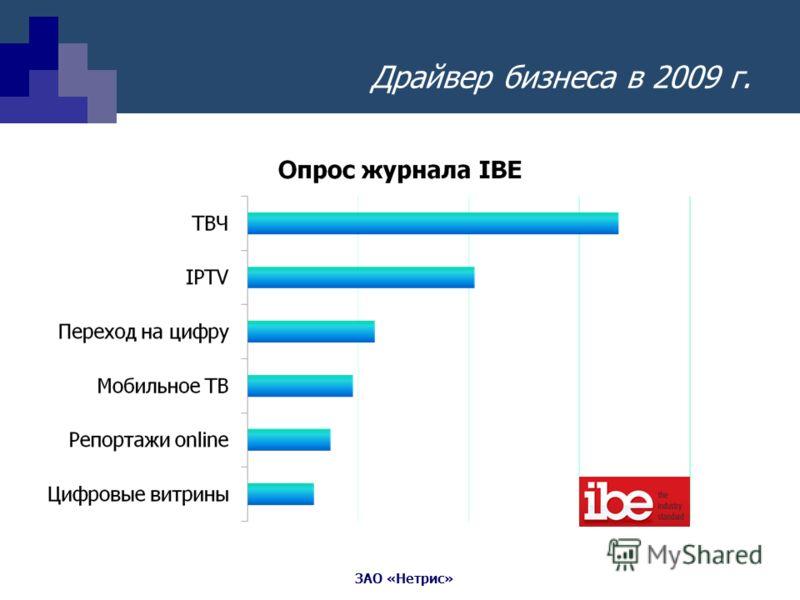 ЗАО «Нетрис» Драйвер бизнеса в 2009 г.