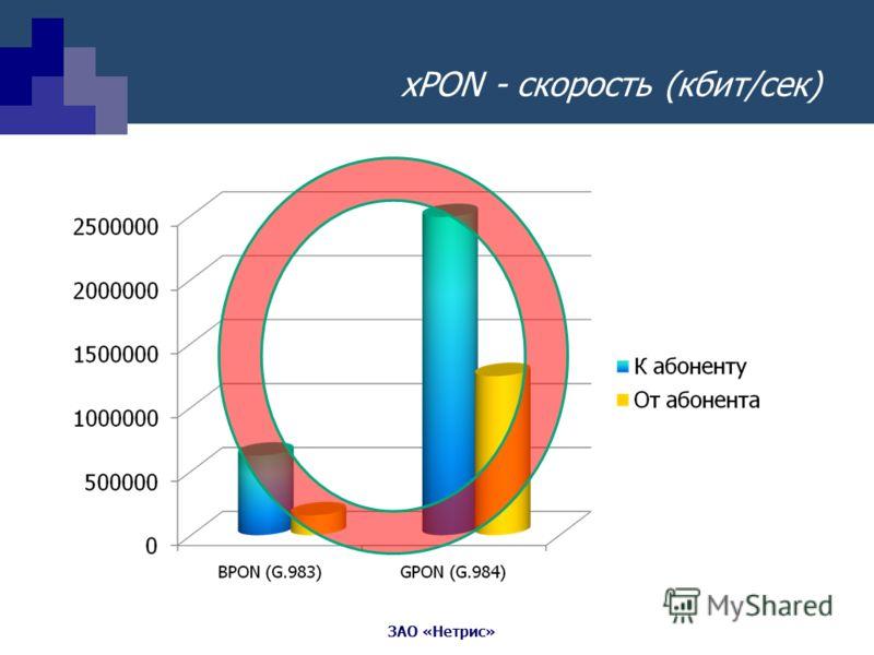 ЗАО «Нетрис» xPON - скорость (кбит/сек)
