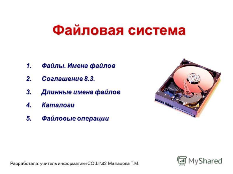 Файловая система 1.Файлы. Имена файлов 2.Соглашение 8.3. 3.Длинные имена файлов 4.Каталоги 5.Файловые операции 1 Разработала: учитель информатики СОШ 2 Малахова Т.М.