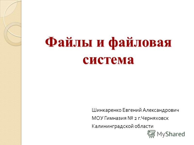 Файлы и файловая система Шинкаренко Евгений Александрович МОУ Гимназия 2 г. Черняховск Калининградской области