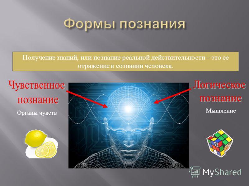 Получение знаний, или познание реальной действительности – это ее отражение в сознании человека. Органы чувств Мышление