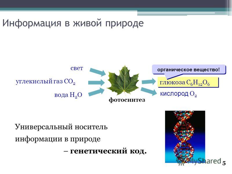 5 Информация в живой природе Универсальный носитель информации в природе – генетический код. фотосинтез глюкоза C 6 H 12 O 6 кислород O 2 вода H 2 O углекислый газ CO 2 свет органическое вещество!