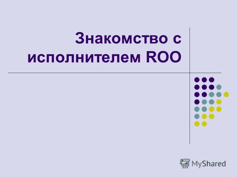 Знакомство с исполнителем ROO