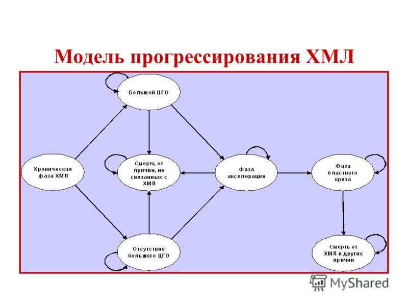 Модель прогрессирования ХМЛ