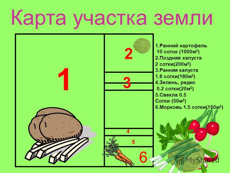 Карта участка земли 1 2 3 4 5 6 1.Ранний картофель 10 соток (1000м 2 ) 2.Поздняя капуста 2 сотки(200м 2 ) 3.Ранняя капуста 1.8 сотки(180м 2 ) 4.Зелень, редис 0.2 сотки(20м 2 ) 5.Свекла 0.5 Сотки (50м 2 ) 6.Морковь 1.5 сотки(150м 2 )